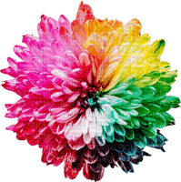 Kaz_Creations Deco Flowers Flower Colours