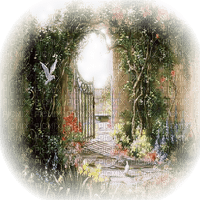 jardin paysage garden landscape