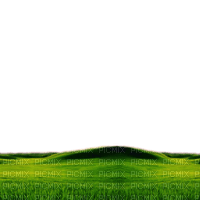 grass landscape field