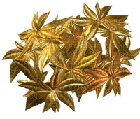 fleur dorée .Cheyenne63