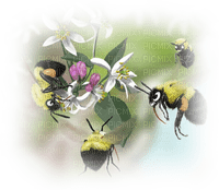 Kaz_Creations Paysage Scenery Bees