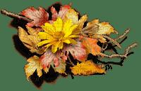 autumn flower deco  automne  fleur