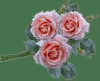 flower fleur kukka ruusu rose