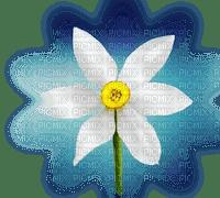 floare 10