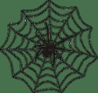 hämähäkki, spider