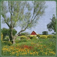spring bg landscape printemps paysage