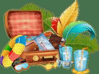 valise deco beach bag case