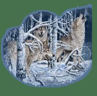 wolf winter loup neige
