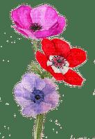 flores fleur flower blumen