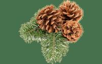 christmas noel branch fir deco