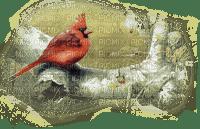 paysage,oiseau,bird
