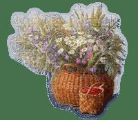 kosz,maliny kwiay