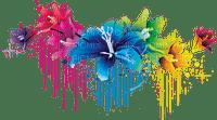 flowers border colorful fleurs