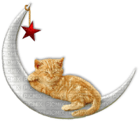 chat lune GS