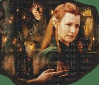 the hobbit kili and tauriel
