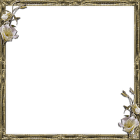 frame beige bp