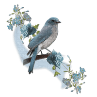 minou  bird and flower blue