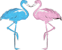FLAMINGO BLUE PINK flamand rose 🦩🦩
