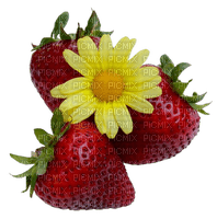 Strawberry Yellow Red Green Flower - Bogusia
