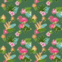 Fond flamands roses fleurs été plantes Debutante