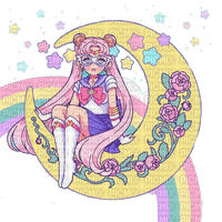 Sailor moon ❤️ elizamio