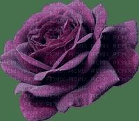 Fleur.flower.Rose.Deco.violet.purple.Victoriabea