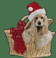 Noël.Dog.Chien.Perro.Christmas.Navidad.basket.Santa Claus.Victoriabea.