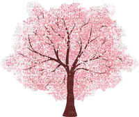 Tree arbre sakura fleur rose pink flower