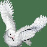 oiseaux,deko,tube,garden, Pelageya