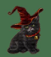 katt-cat-halloween
