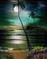 Île-palmier