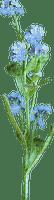 Fleur.Flower.Blue.Victoriabea