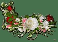 MMarcia deco rosas