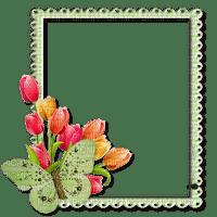 Cadre.Frame.Tulips.Tulipes.Victoriabea