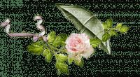 Schirm und Rose