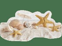 starfish deco beach êtoile de mer plage
