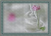 bg--background---flowers--blommor