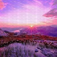 autumn  sunset automne violet coucher de soleil