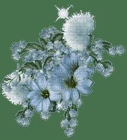 blommor-flowers-blå--blue
