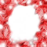 ROUGE CADRE FEUILLES AUTOMNE RED LEAVES FRAME AUTUMN