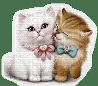 CATS LOVE chats amour de tendresse