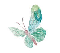 Papillon.Green.Butterfly.Aquarelle.Victoriabea