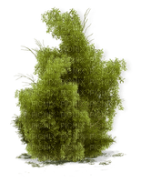 Kaz_Creations Garden Deco Grass Bush