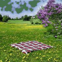 spring printemps fond background hintergrund  image paysage  landscape garden jardin grass park parc prairie Meadow wiese lilac lilas picnic picknick tree arbre