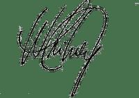 Kaz_Creations Signature Whitney Houston Singer Music