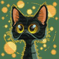 chat noir black cat