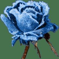 Flowers frozen bp