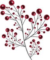 hiver _branche _ noël_Winter christmas branch
