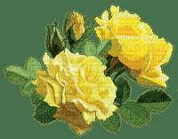 rose fleur deko Adam  rose
