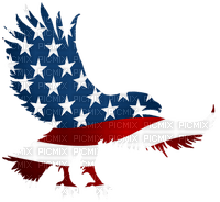 Kaz_Creations America 4th July Independance Day American Eagle